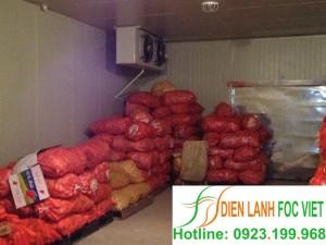 Lắp đặt kho lạnh cà rốt tại Công ty Hưng Gia Nguyễn
