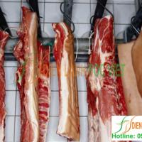 Thi công kho lạnh bảo quản thịt lợn