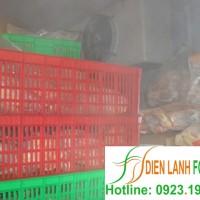 lắp đặt kho lạnh thực phẩm