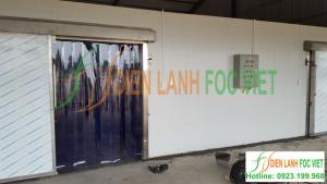 Lắp đặt kho lạnh bảo quản cà rốt tại Bắc Ninh